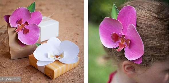 paper,flower,decoration,orchid,wrapping