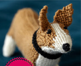 dog,animal,knitting